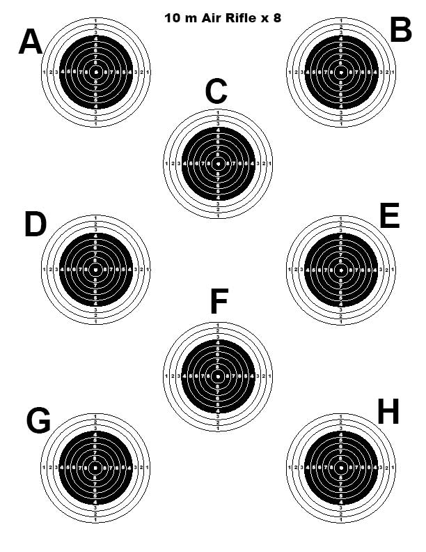 It is a photo of Universal Air Rifle Targets Pdf